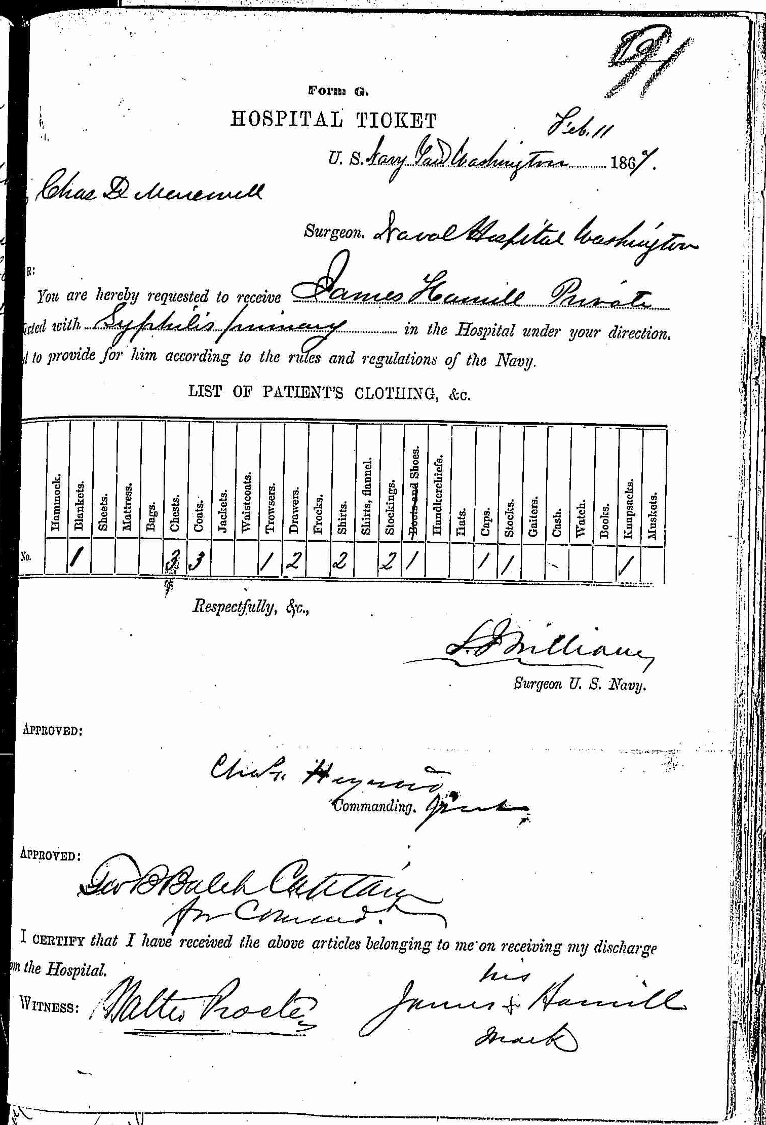 Entry for James Hamill (page 1 of 2) in the log Hospital Tickets and Case Papers - Naval Hospital - Washington, D.C. - 1865-68